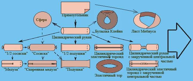 Классификационная схема